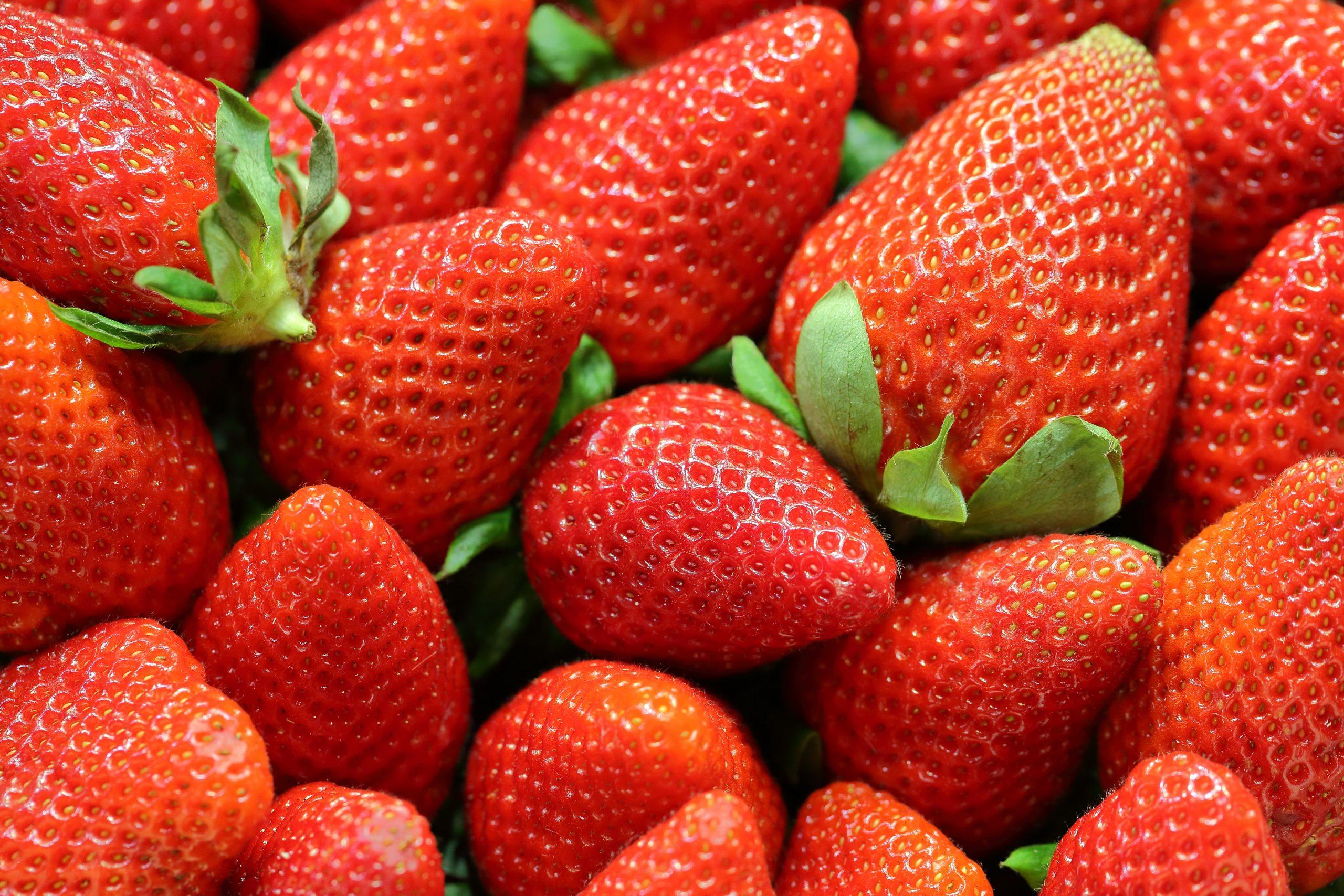 loads of strawberries